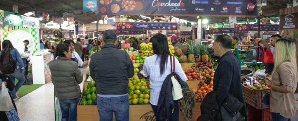 En diciembre aproveche la variedad de productos que ofrecen las Plazas Distritales de Mercado