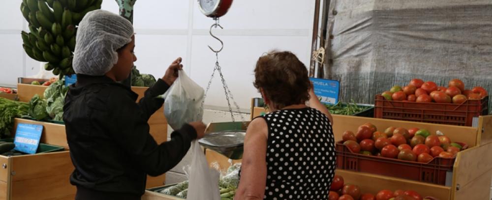Llegó el mercado campesino a la Plaza de Kennedy
